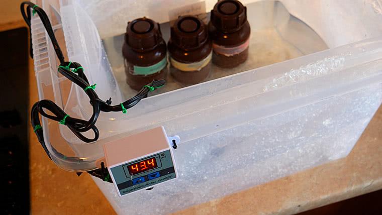 DIY temperature control setup for home film developing