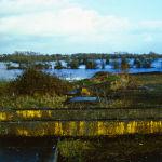 image-15-spring-flood-ireland-f13
