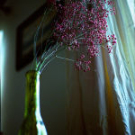 image-2-flowers-f2
